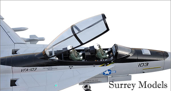 Radio Controlled F18 Super Hornet Jet