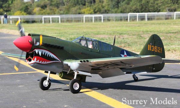P40 Warhawk